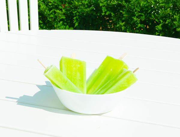 proteinglass med skinnyshake